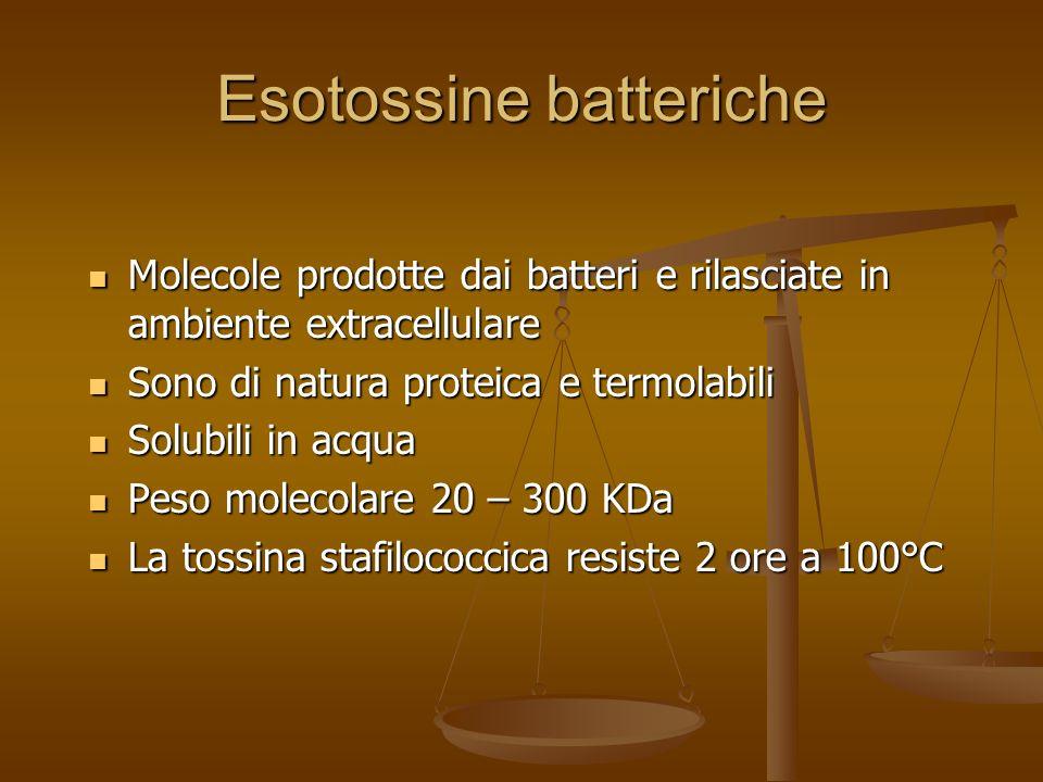 Esotossine batteriche