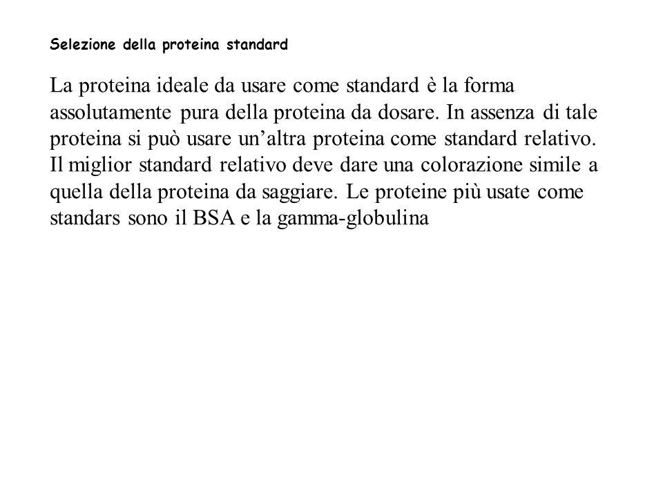 Selezione della proteina standard