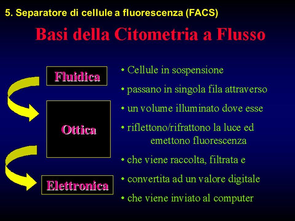 5. Separatore di cellule a fluorescenza (FACS)