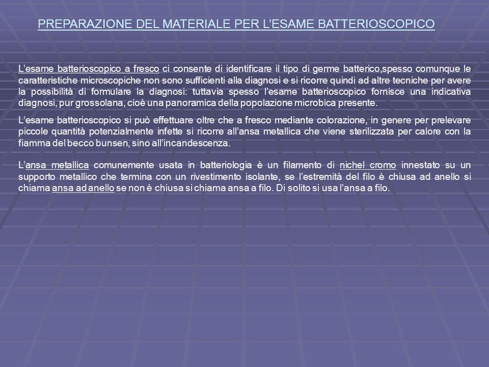 PREPARAZIONE DEL MATERIALE PER L'ESAME BATTERIOSCOPICO