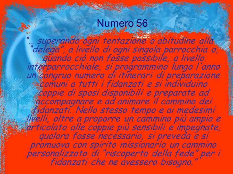 Numero 56