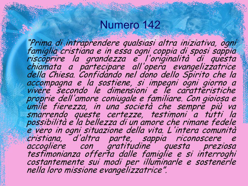 Numero 142