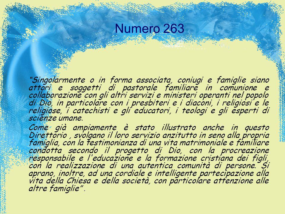 Numero 263