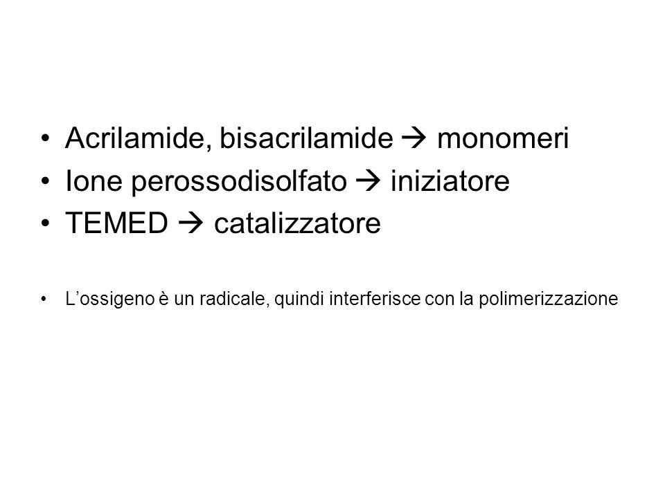 Acrilamide, bisacrilamide  monomeri