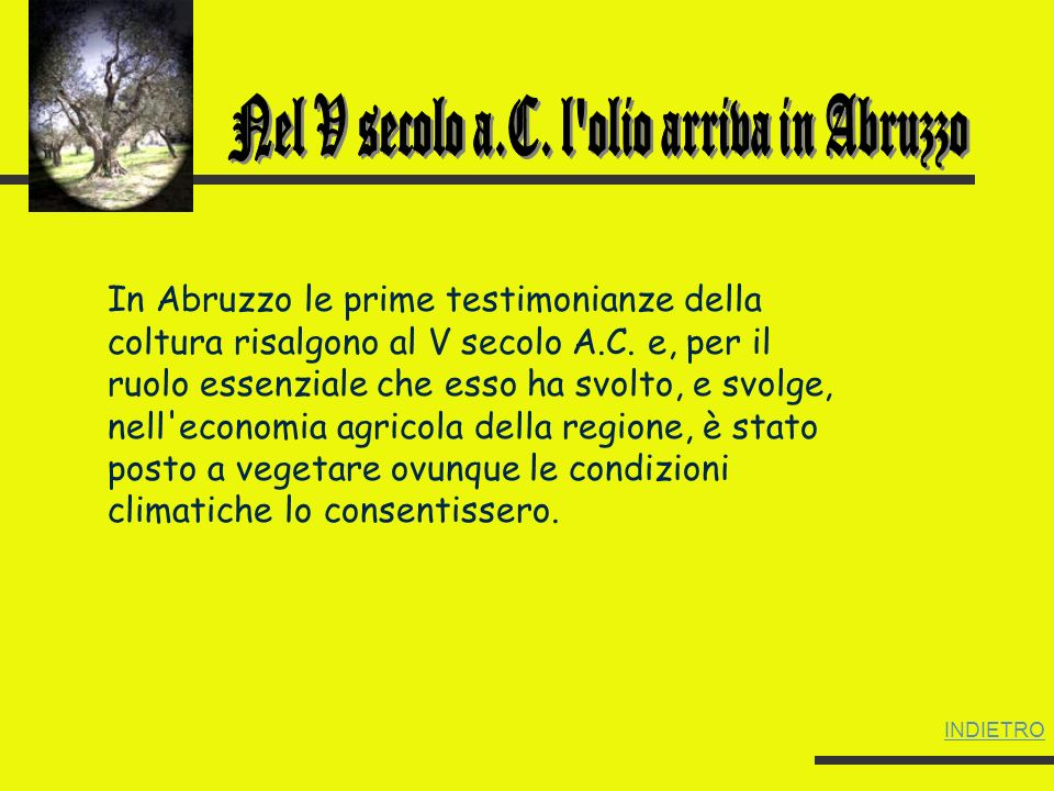 Nel V secolo a.C. l olio arriva in Abruzzo
