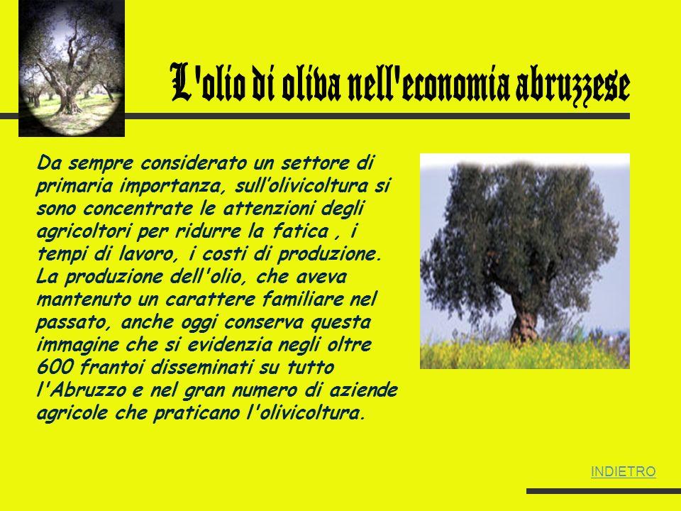 L olio di oliva nell economia abruzzese