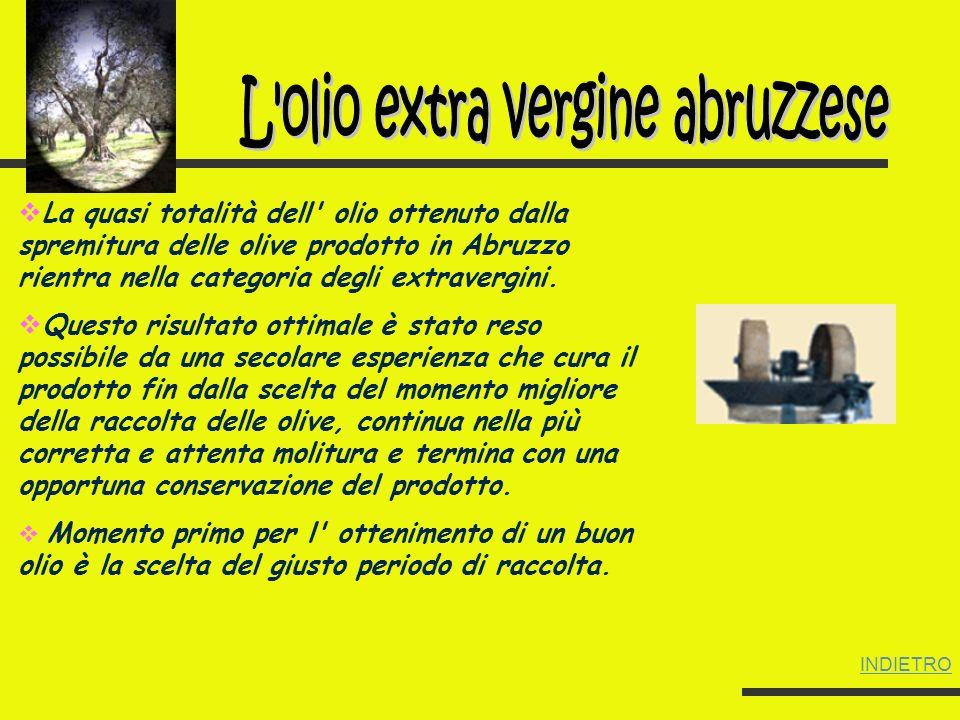 L olio extra vergine abruzzese