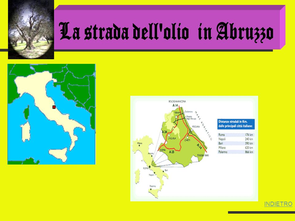 La strada dell olio in Abruzzo
