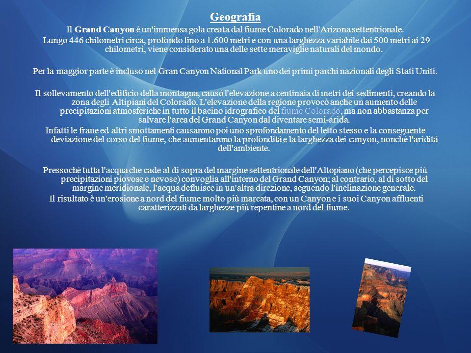 Geografia Il Grand Canyon è un immensa gola creata dal fiume Colorado nell Arizona settentrionale.