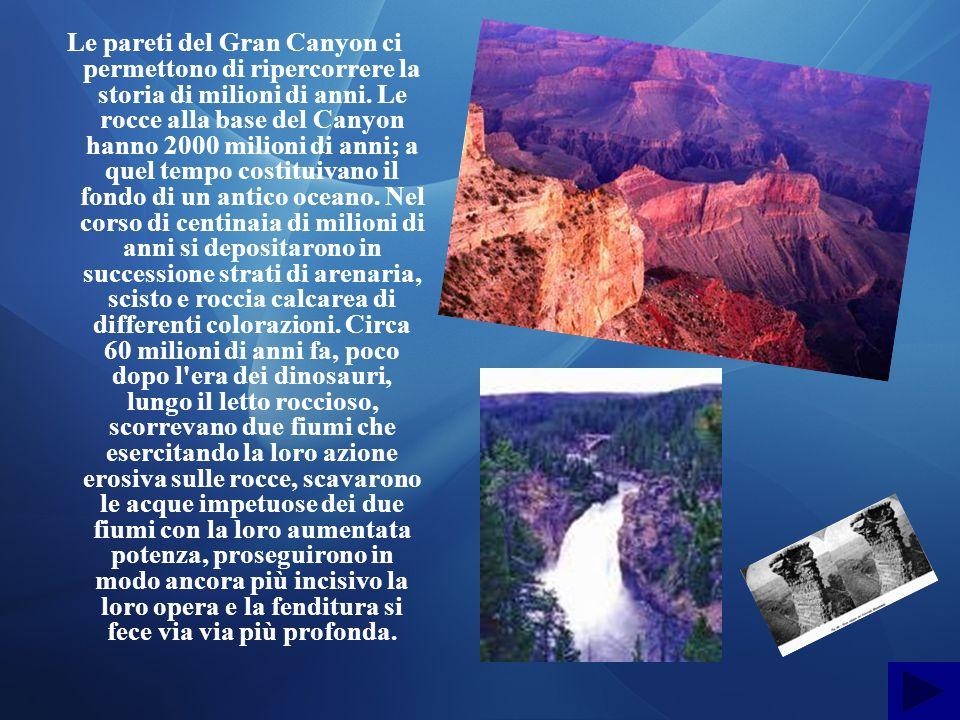 Le pareti del Gran Canyon ci permettono di ripercorrere la storia di milioni di anni.