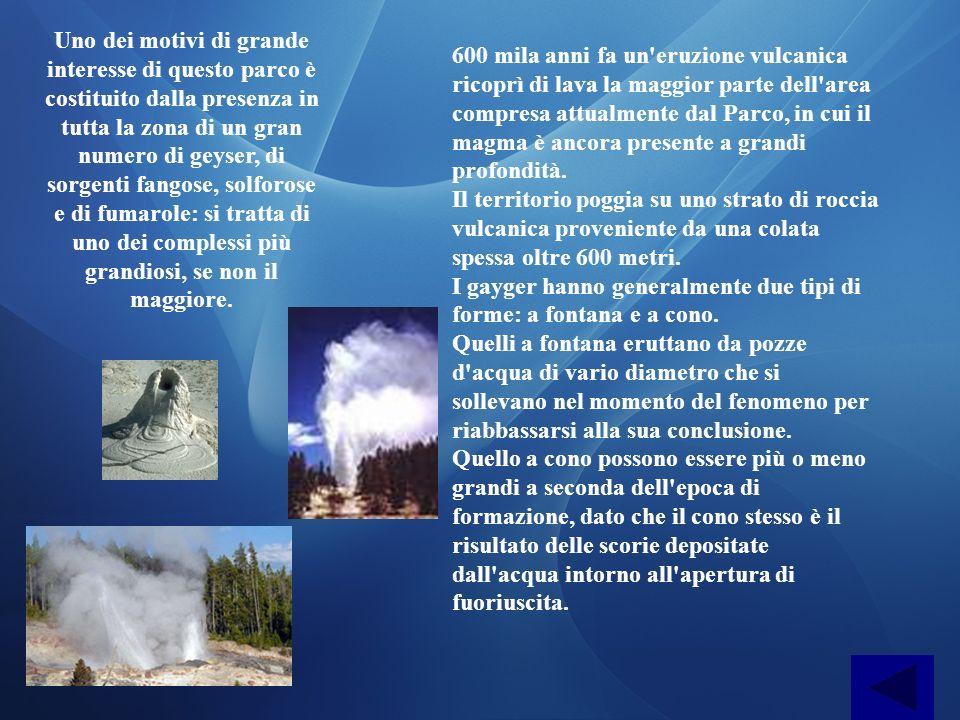 Uno dei motivi di grande interesse di questo parco è costituito dalla presenza in tutta la zona di un gran numero di geyser, di sorgenti fangose, solforose e di fumarole: si tratta di uno dei complessi più grandiosi, se non il maggiore.
