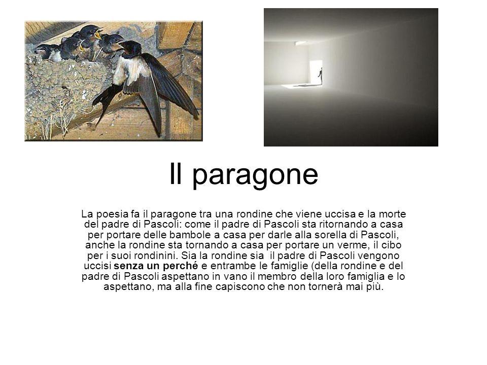 Il paragone