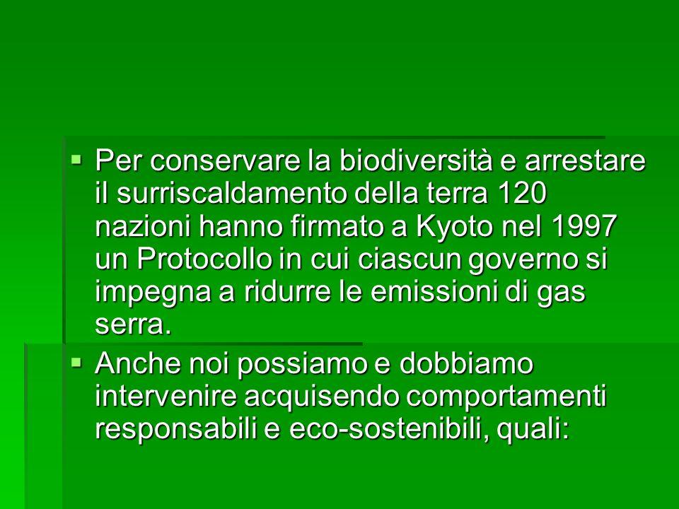 Per conservare la biodiversità e arrestare il surriscaldamento della terra 120 nazioni hanno firmato a Kyoto nel 1997 un Protocollo in cui ciascun governo si impegna a ridurre le emissioni di gas serra.