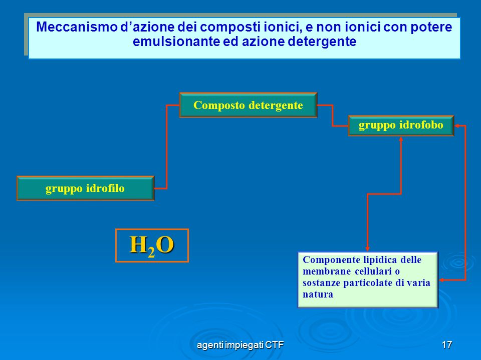 Meccanismo d'azione dei composti ionici, e non ionici con potere emulsionante ed azione detergente