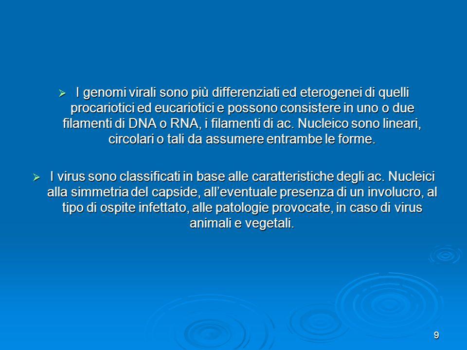 I genomi virali sono più differenziati ed eterogenei di quelli procariotici ed eucariotici e possono consistere in uno o due filamenti di DNA o RNA, i filamenti di ac. Nucleico sono lineari, circolari o tali da assumere entrambe le forme.