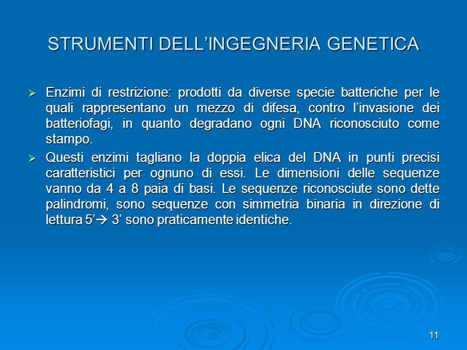 STRUMENTI DELL'INGEGNERIA GENETICA