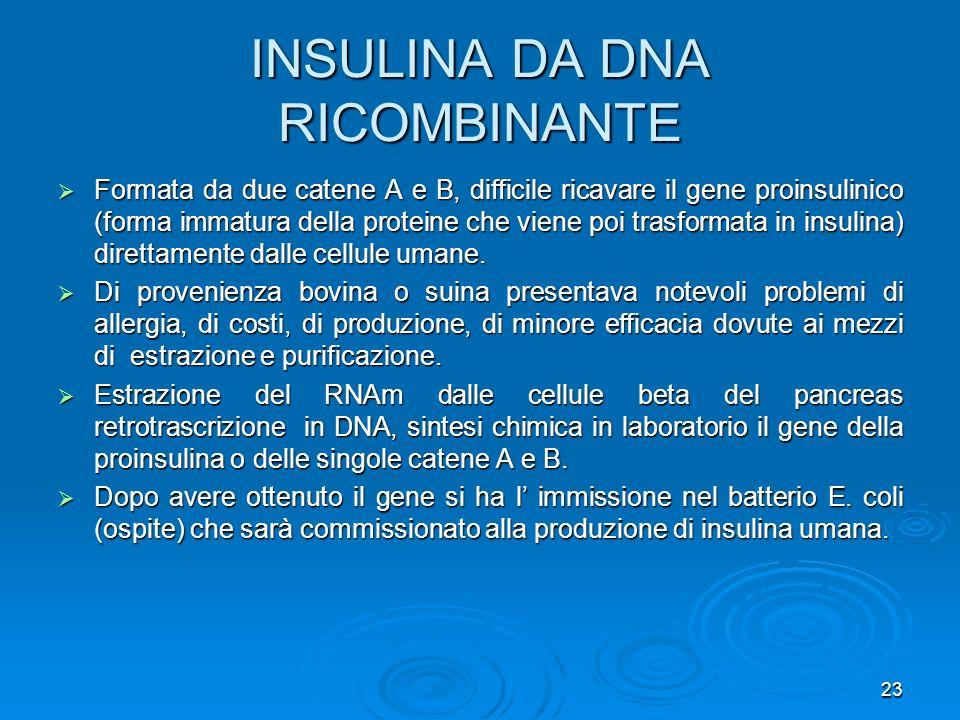 INSULINA DA DNA RICOMBINANTE