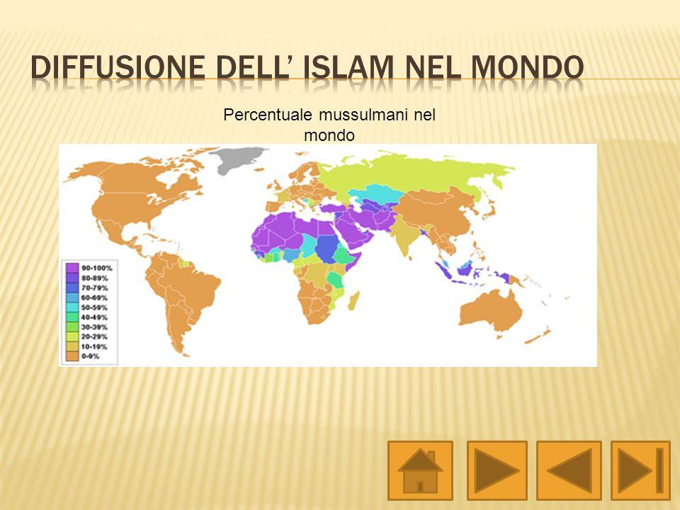 Diffusione dell' Islam nel mondo