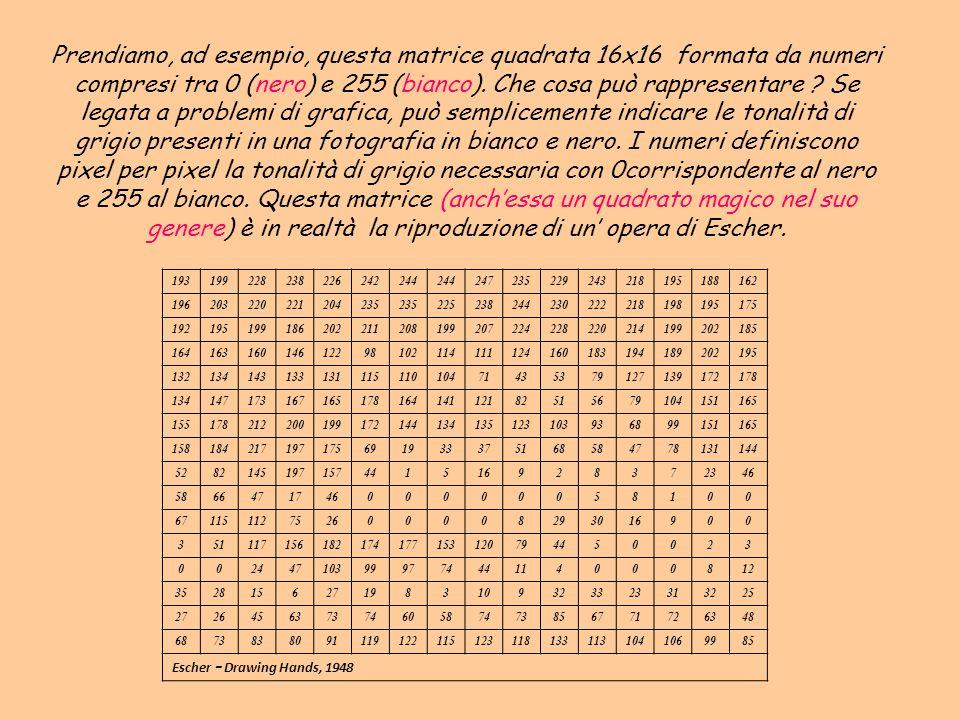 Prendiamo, ad esempio, questa matrice quadrata 16x16 formata da numeri compresi tra 0 (nero) e 255 (bianco). Che cosa può rappresentare Se legata a problemi di grafica, può semplicemente indicare le tonalità di grigio presenti in una fotografia in bianco e nero. I numeri definiscono pixel per pixel la tonalità di grigio necessaria con 0corrispondente al nero e 255 al bianco. Questa matrice (anch'essa un quadrato magico nel suo genere) è in realtà la riproduzione di un' opera di Escher.