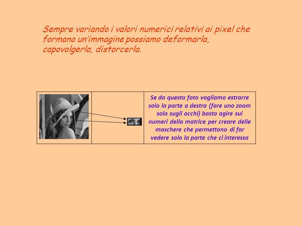 Sempre variando i valori numerici relativi ai pixel che formano un'immagine possiamo deformarla, capovolgerla, distorcerla.
