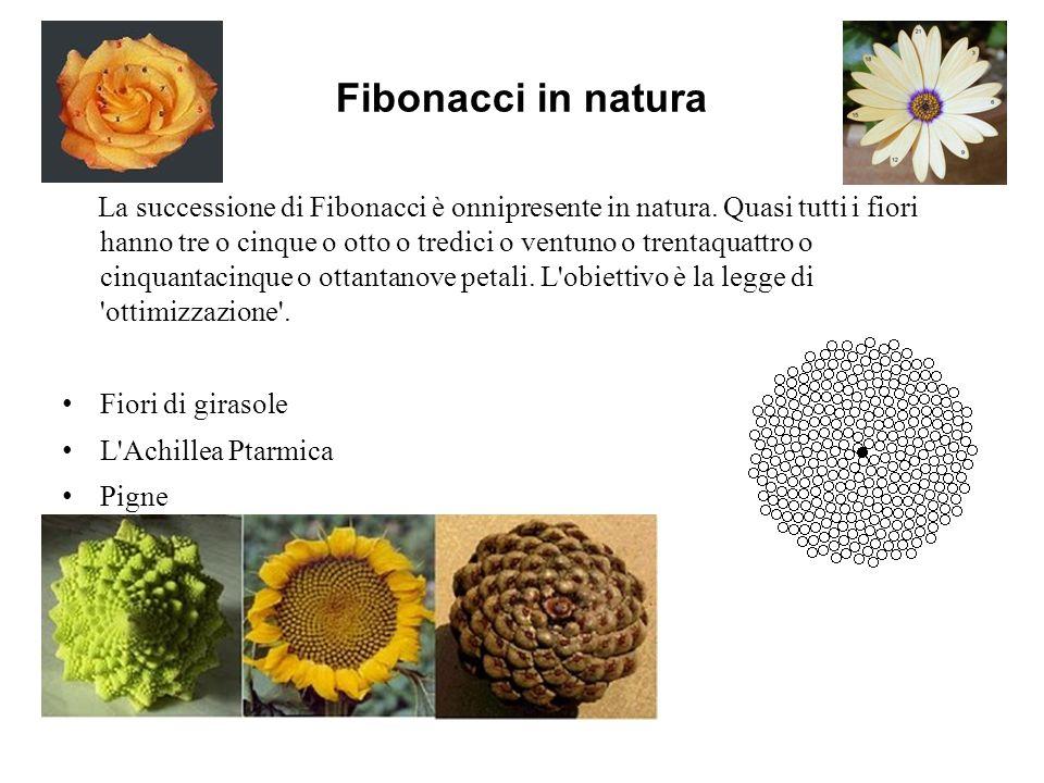 Fibonacci in natura