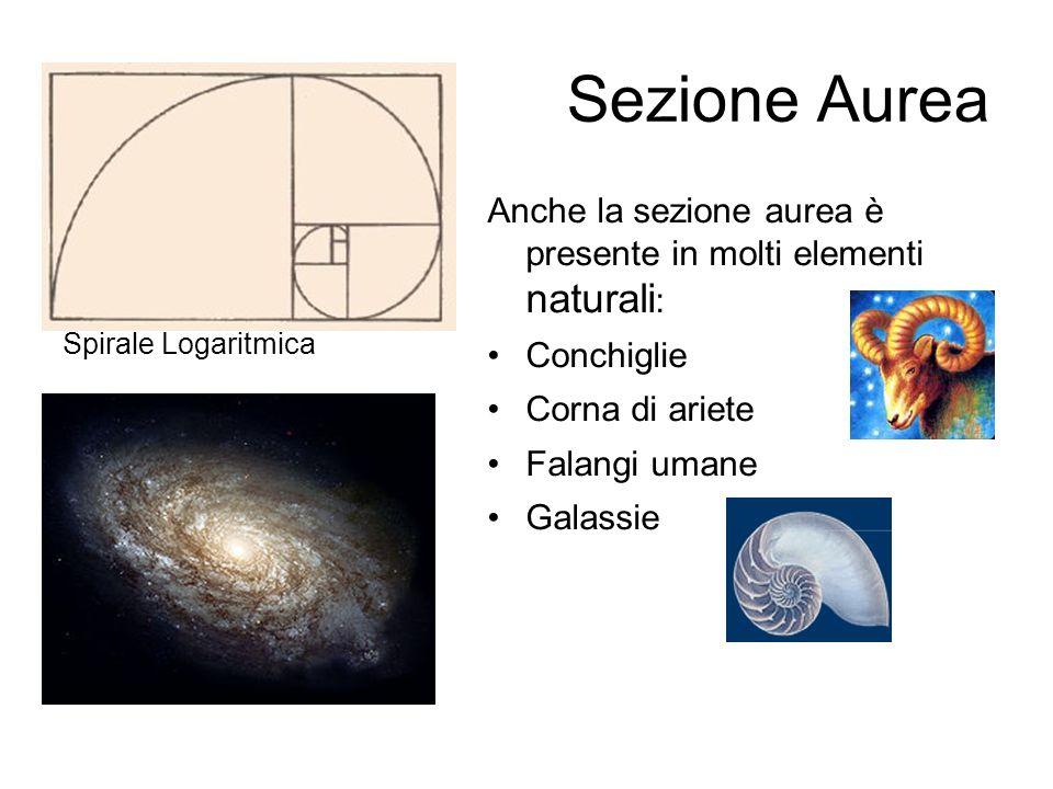 Sezione AureaSpirale Logaritmica. Anche la sezione aurea è presente in molti elementi naturali: Conchiglie.