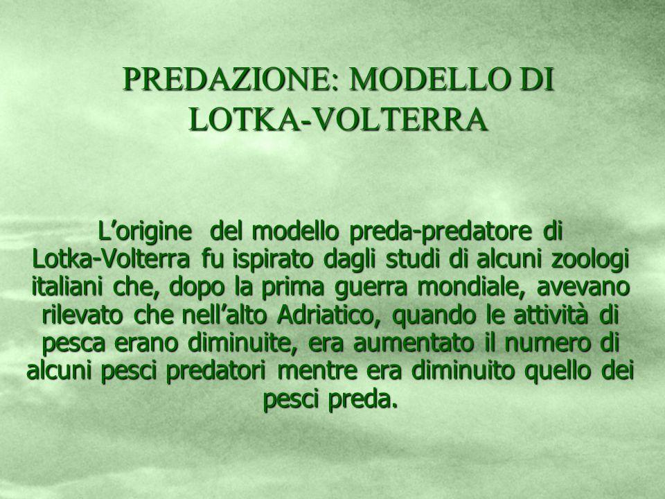 PREDAZIONE: MODELLO DI LOTKA-VOLTERRA
