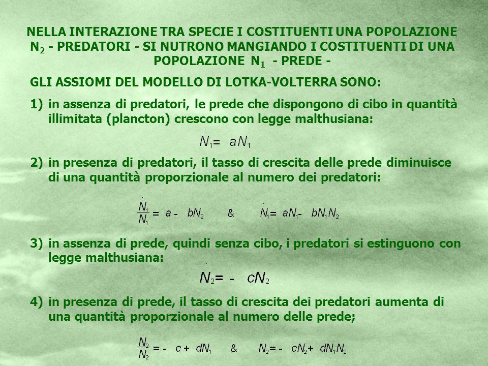 NELLA INTERAZIONE TRA SPECIE I COSTITUENTI UNA POPOLAZIONE N2 - PREDATORI - SI NUTRONO MANGIANDO I COSTITUENTI DI UNA POPOLAZIONE N1 - PREDE -