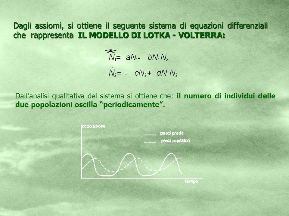 Dagli assiomi, si ottiene il seguente sistema di equazioni differenziali che rappresenta IL MODELLO DI LOTKA - VOLTERRA: