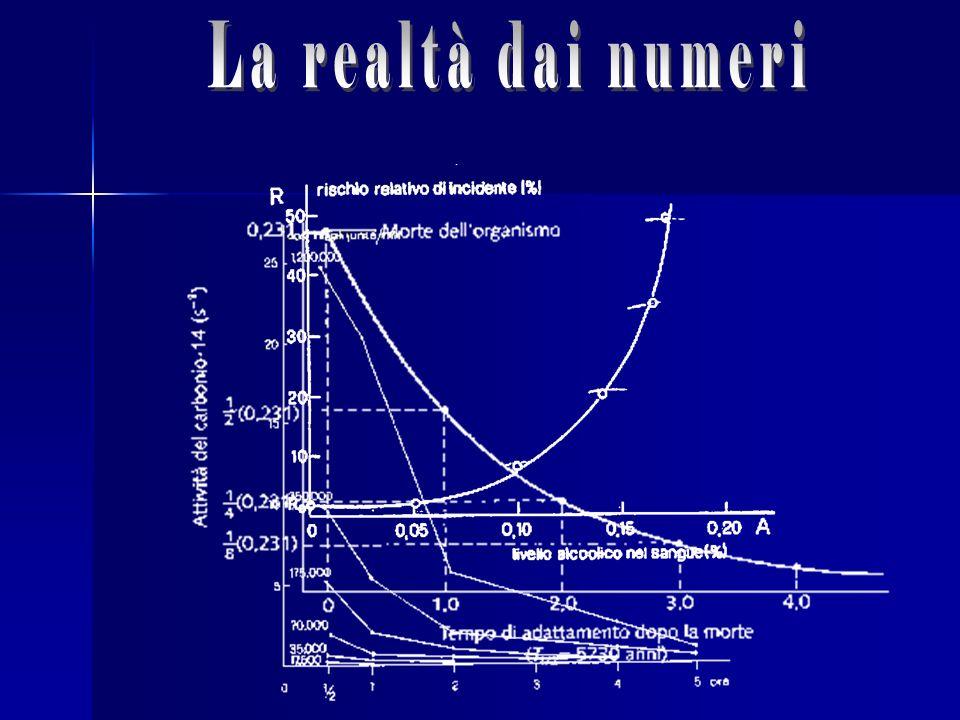 La realtà dai numeri