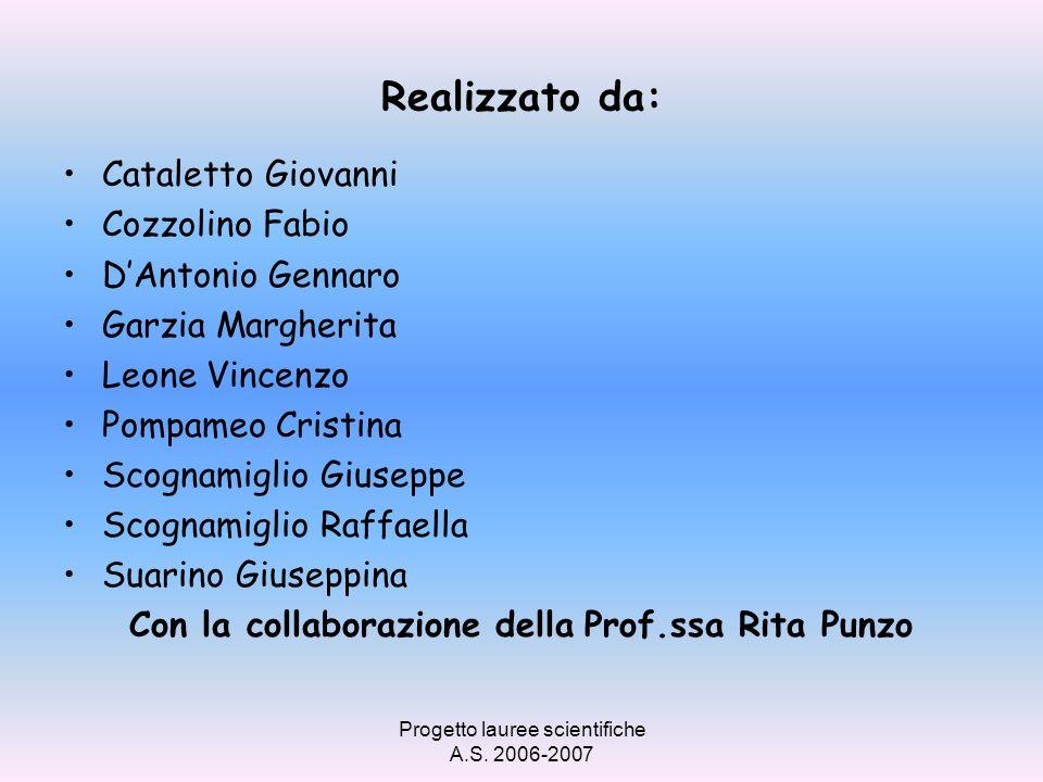 Realizzato da: Cataletto Giovanni Cozzolino Fabio D'Antonio Gennaro
