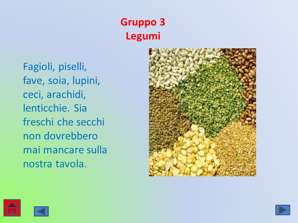 Gruppo 3 Legumi.