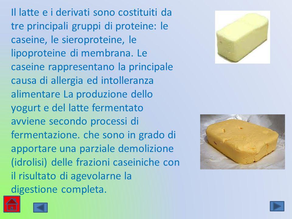 Il latte e i derivati sono costituiti da tre principali gruppi di proteine: le caseine, le sieroproteine, le lipoproteine di membrana.