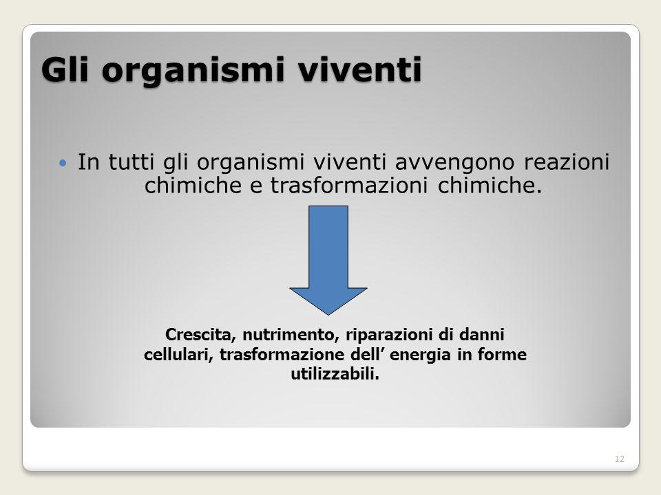 Gli organismi viventi In tutti gli organismi viventi avvengono reazioni chimiche e trasformazioni chimiche.
