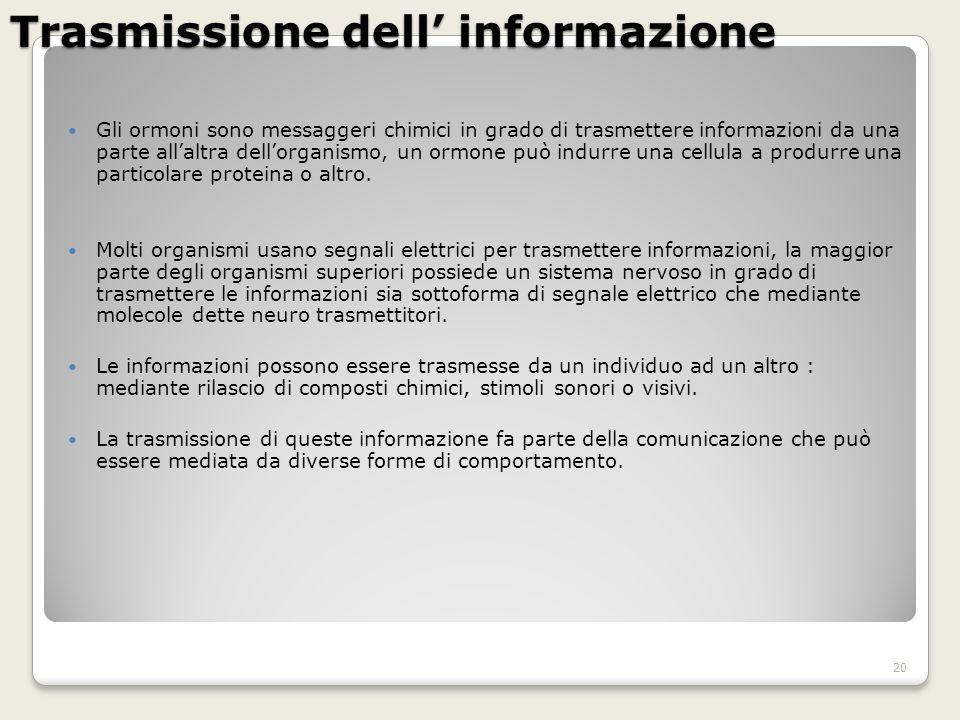 Trasmissione dell' informazione