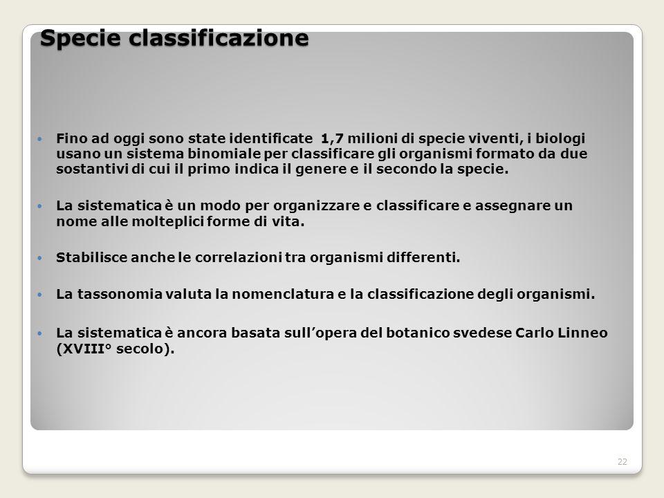 Specie classificazione
