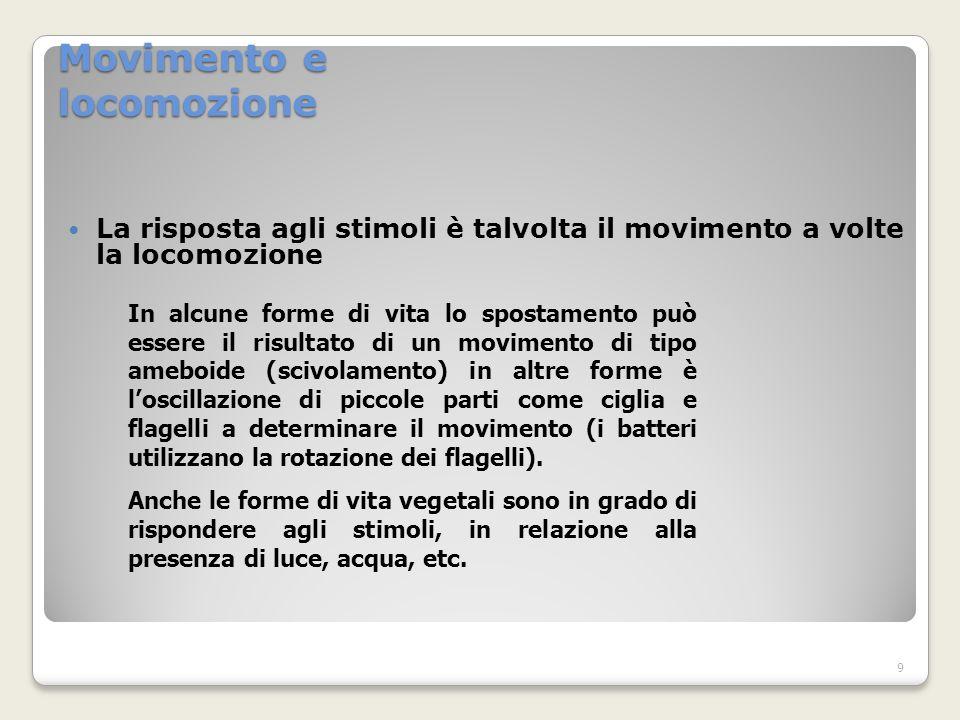 Movimento e locomozione