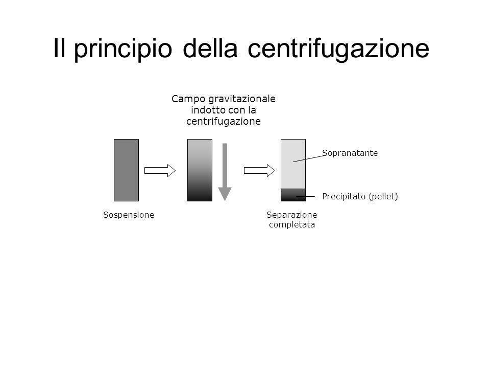 Il principio della centrifugazione