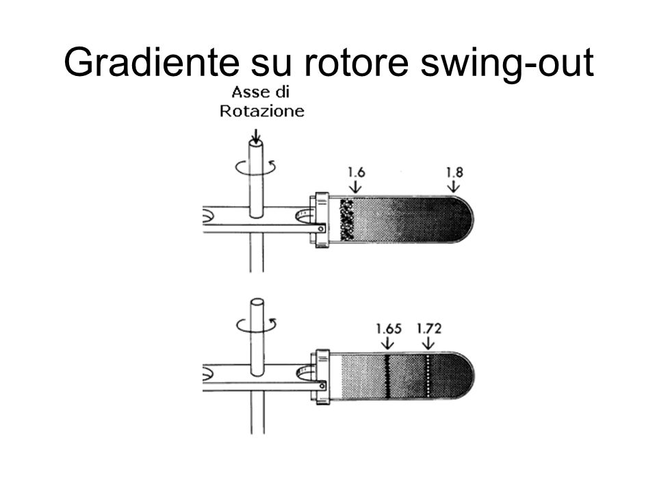 Gradiente su rotore swing-out