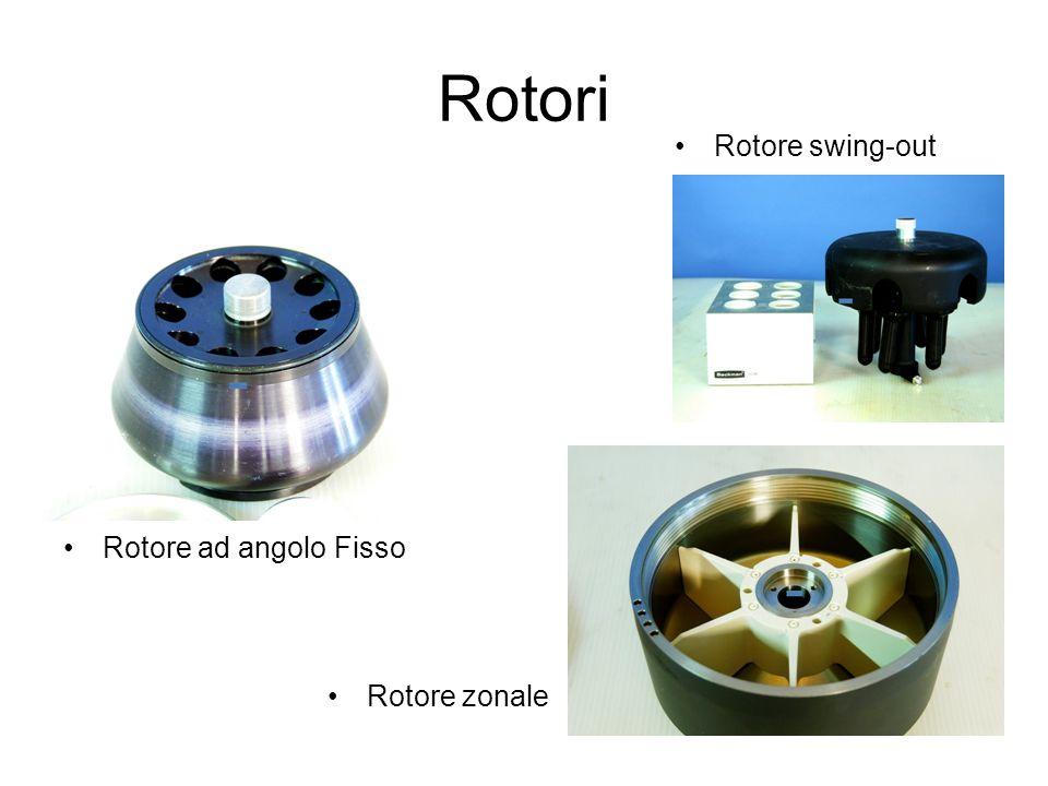 Rotori Rotore swing-out Rotore ad angolo Fisso Rotore zonale