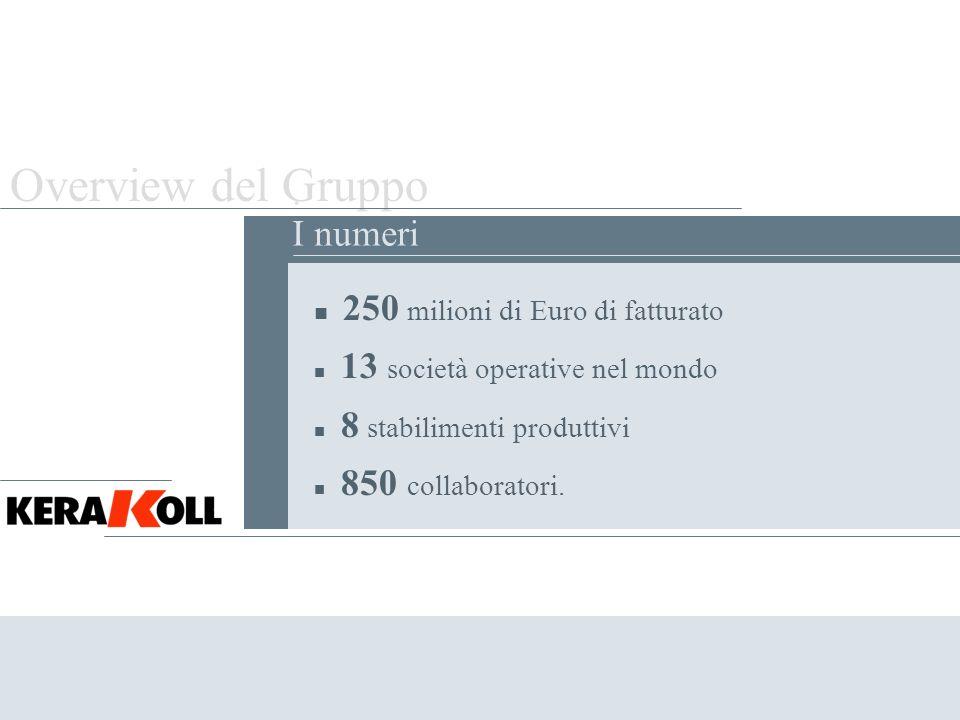 Overview del Gruppo . I numeri 250 milioni di Euro di fatturato