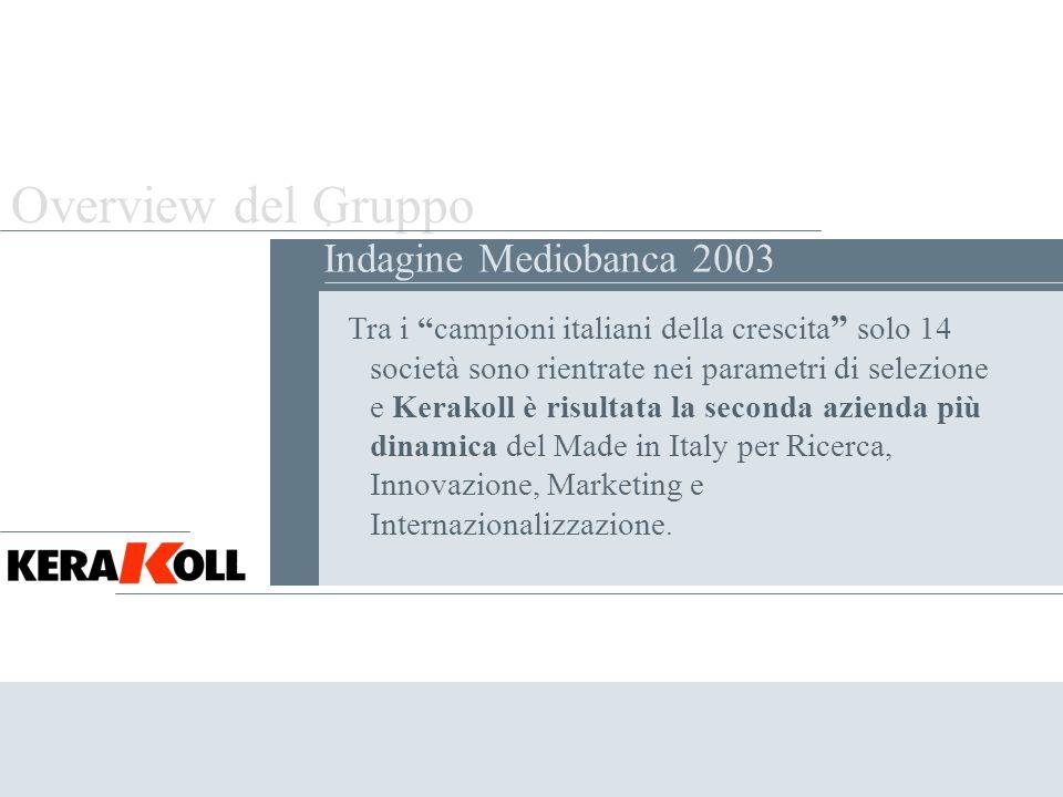 Overview del Gruppo . Indagine Mediobanca 2003