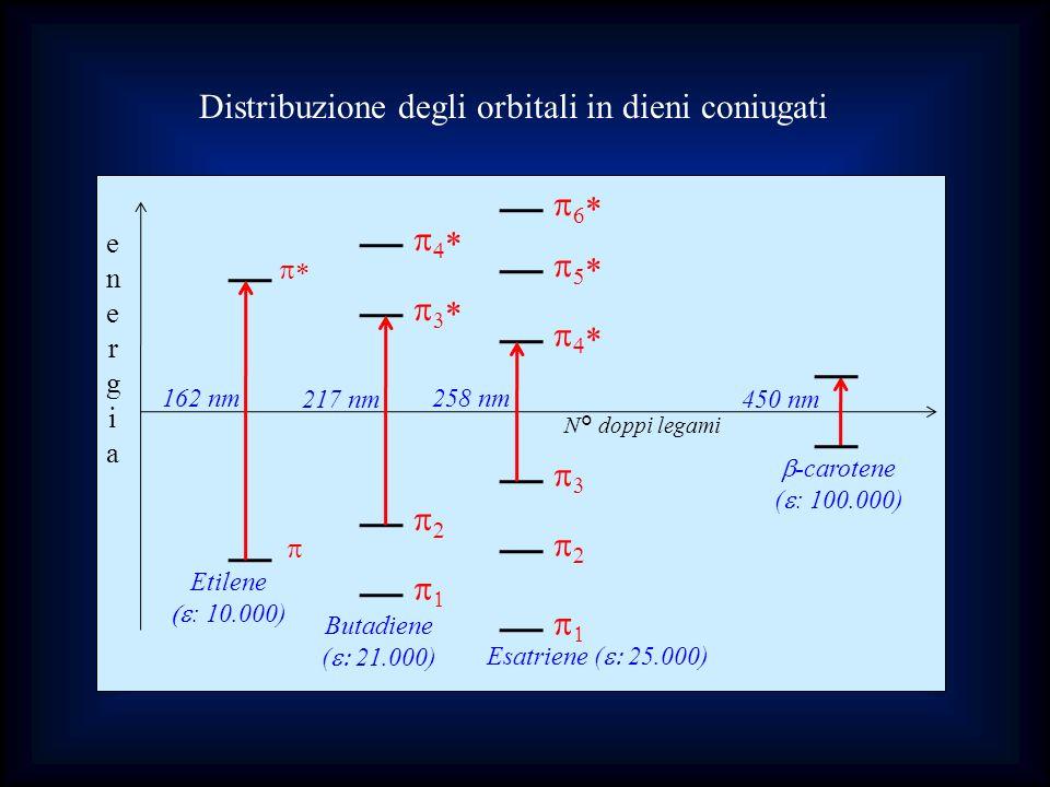 Distribuzione degli orbitali in dieni coniugati
