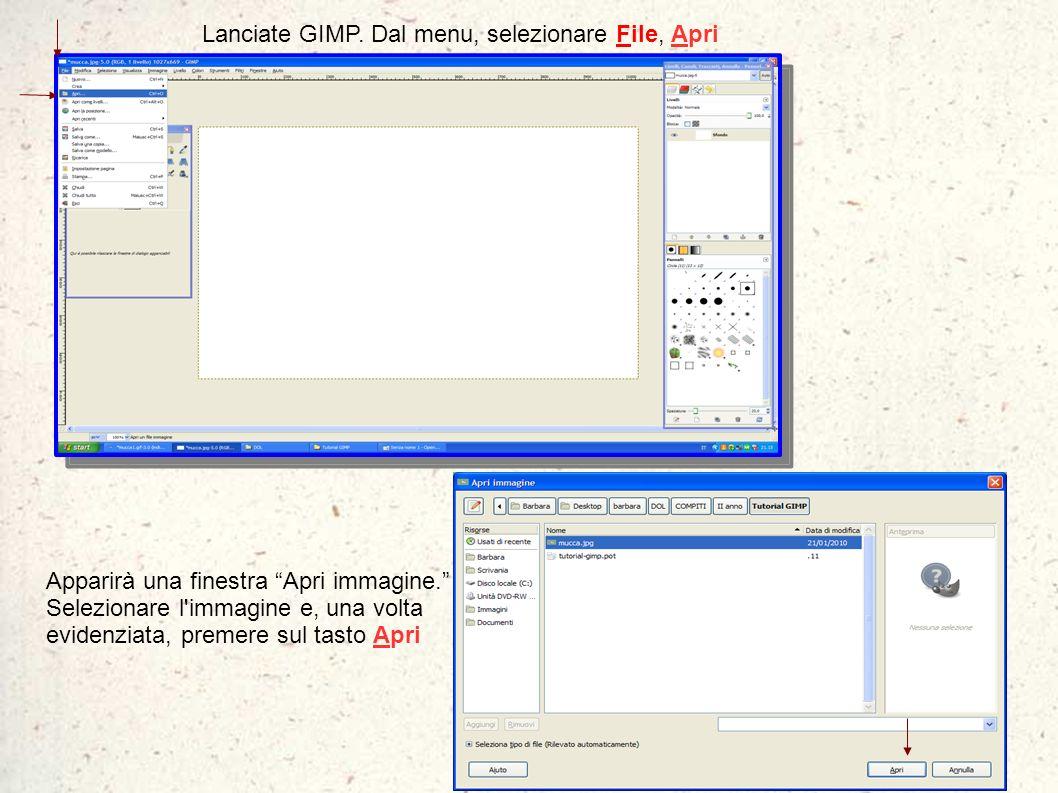 Lanciate GIMP. Dal menu, selezionare File, Apri