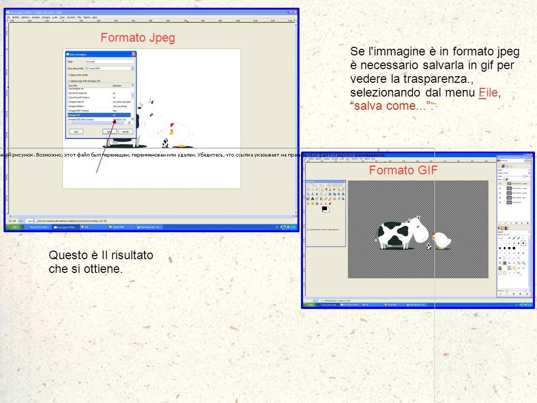 Formato Jpeg Se l immagine è in formato jpeg è necessario salvarla in gif per vedere la trasparenza., selezionando dal menu File, salva come... .