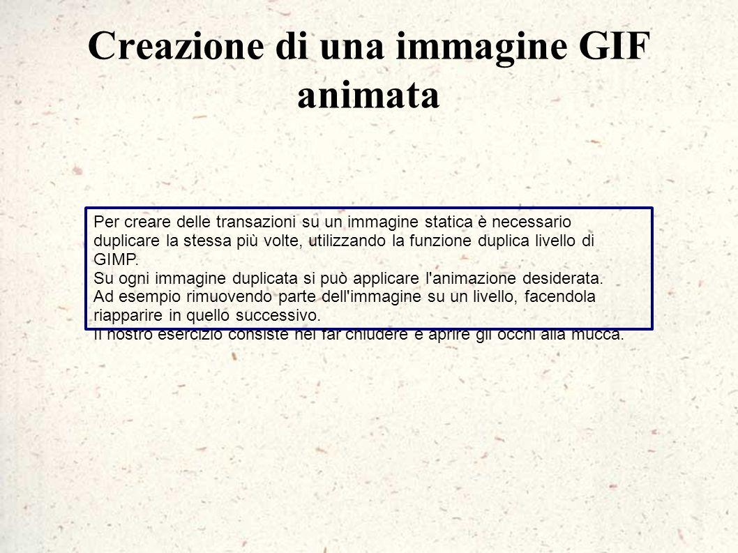 Creazione di una immagine GIF animata