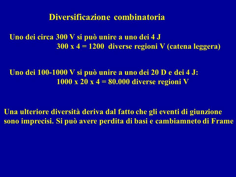 Diversificazione combinatoria