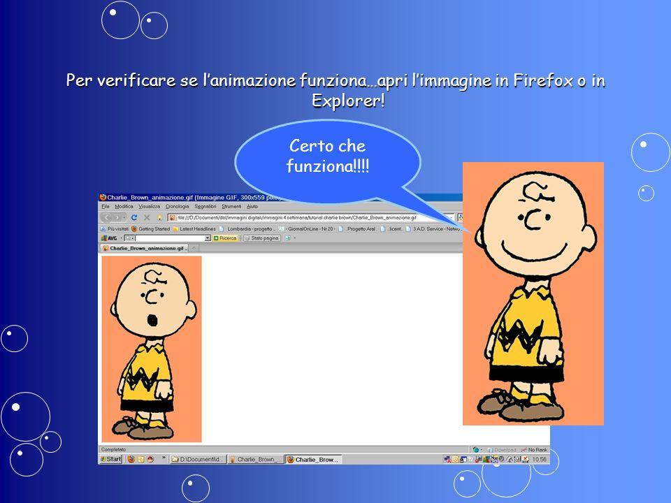 Per verificare se l'animazione funziona…apri l'immagine in Firefox o in Explorer!