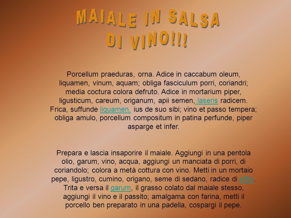 MAIALE IN SALSA DI VINO!!!