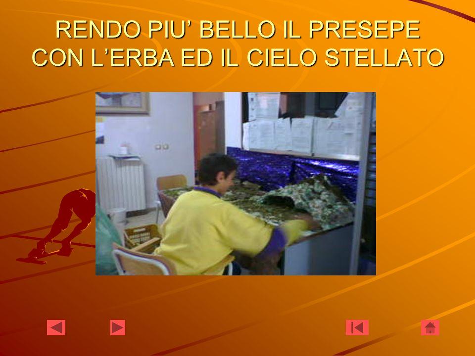 RENDO PIU' BELLO IL PRESEPE CON L'ERBA ED IL CIELO STELLATO